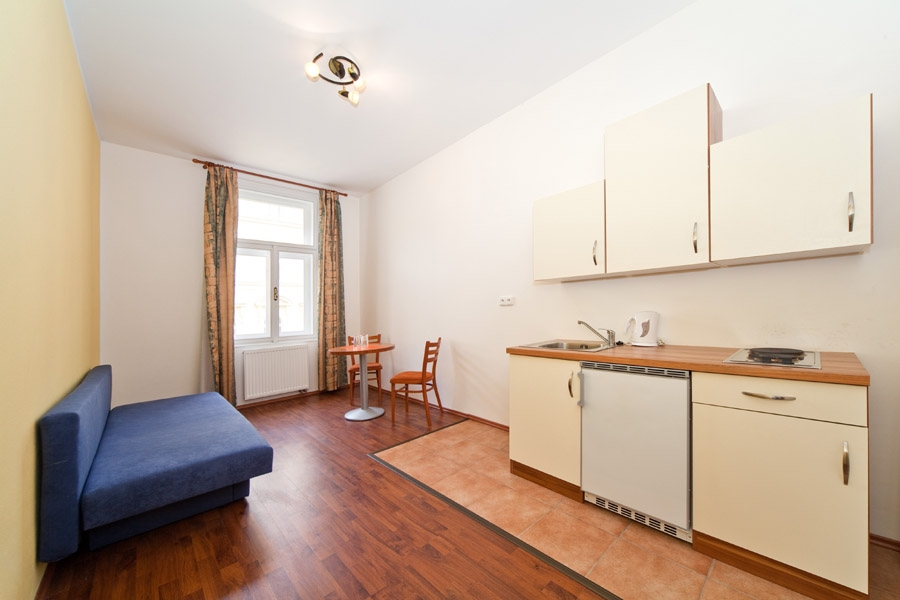 Spacious and cozy apartment in City center of Prague for four people photo 5841717