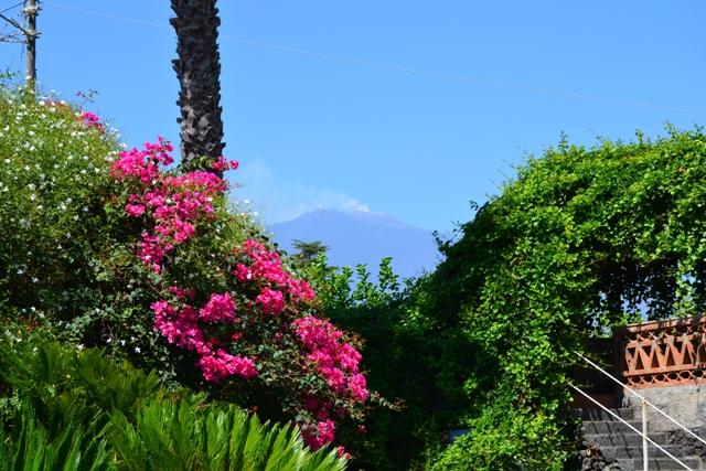 Apartment Villa with garden in Sicily near the sea   photo 18594541